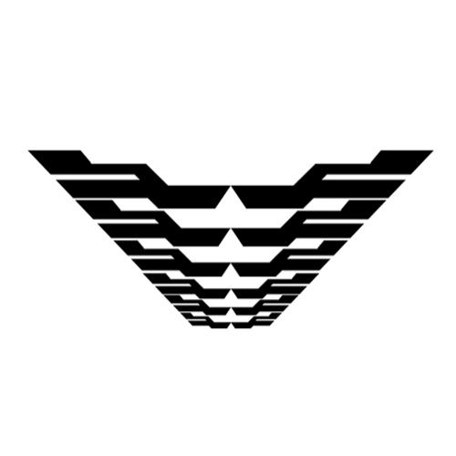 Futuristic wing pattern